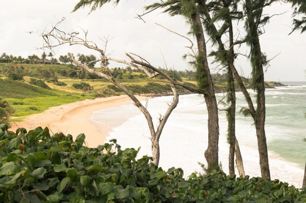 カウアイ島の誰もいないビーチ