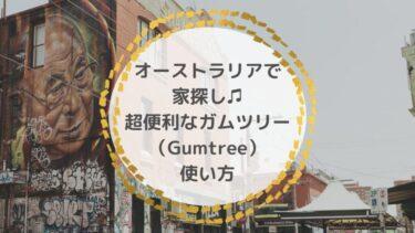 オーストラリアで家探し♫超便利なガムツリー使い方&英語表現|文章例